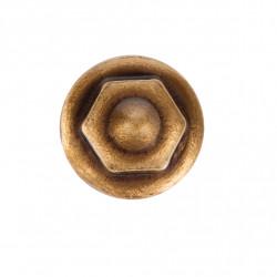 Holsurub Bronz Diam. 2.5 cm