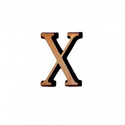 Litere Bronz Roman X 3 cm